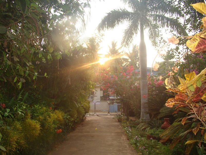 sunrisefront.jpg