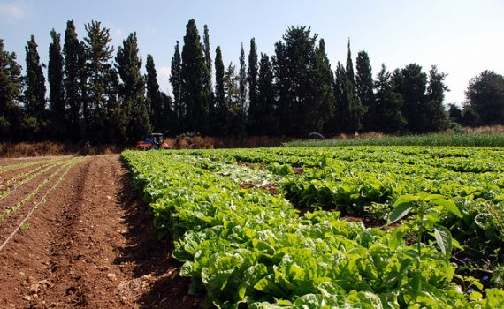How To Open An Agriculture Business Online